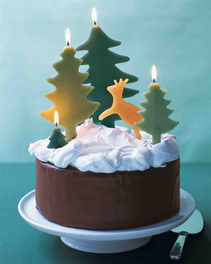 Delicious Christmas Cake Recipes With Pictures