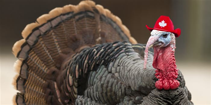 Free Thanksgiving Image For Facebook Profile