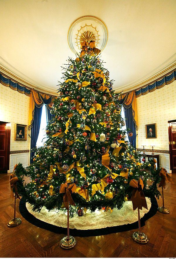 Most Beautiful Decorated Christmas Tree Pictures