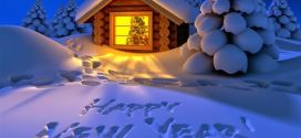 Beautiful Happy New Year Snow Pictures For Facebook