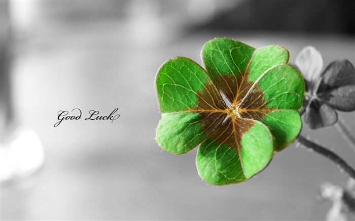 Meaningful St. Patrick's Day Images Backgrounds