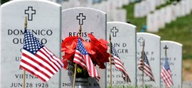 Free Arlington National Cemetery Memorial Day Photos