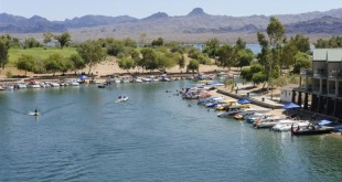 Best Havasu Lake Labor Day Photos