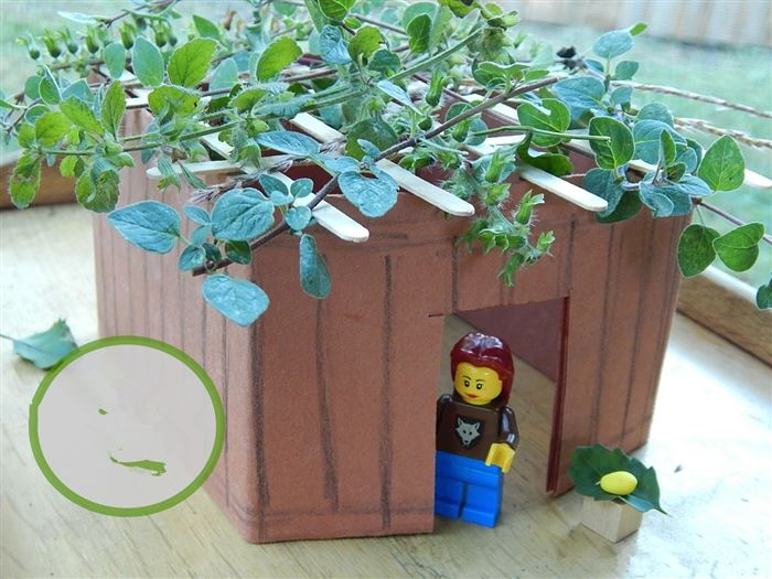 Meaningful Sukkot Pictures Children