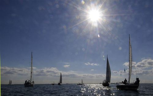 Best Columbus Day Regatta Pictures