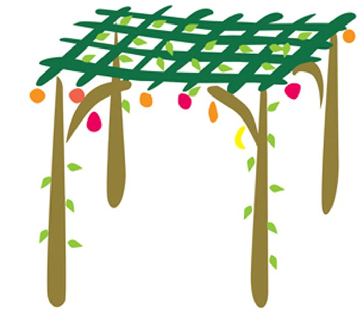 Meaningful Pictures Of Sukkot For Kids