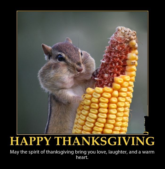 Best Funny Happy Thanksgiving Jokes Pictures