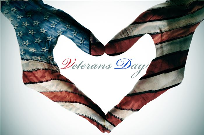 Best Animated Happy Veterans Day Clip Art Free