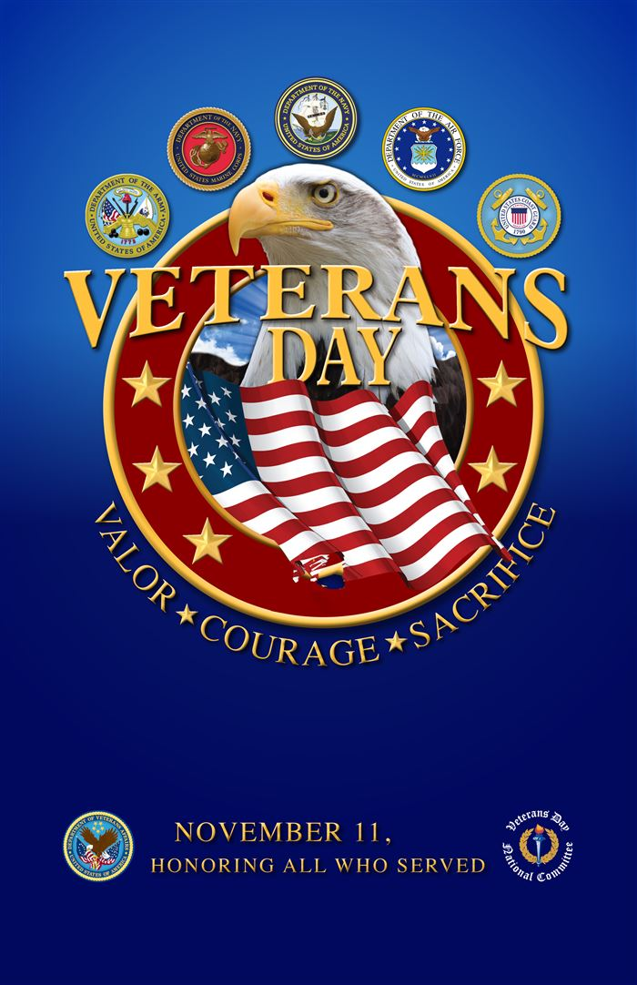 Best Happy Veterans Day Posters Ideas