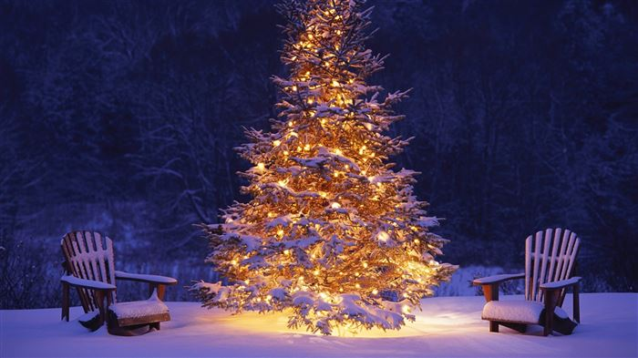 Free Beautiful Xmas Tree Images For Facebook